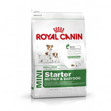 ROYAL CANIN Mini Starter Mother & Babydog - karma dla psa 1kg